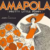 Joseph M. Lacalle - Amapola (Pretty Little Poppy)