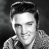 Elvis Presley - If Everyday Was Like Christmas