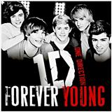 One Direction Forever Young l'art de couverture