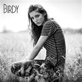 Birdy Wings cover art