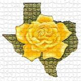 Traditional Folksong The Yellow Rose Of Texas cover art
