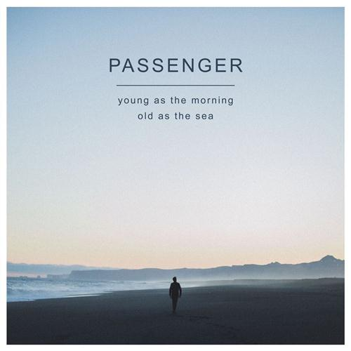 Passenger & Birdy Beautiful Birds cover art