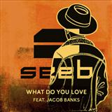 Seeb What Do You Love (featuring Jacob Banks) cover art