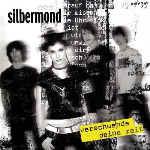 Silbermond Verschwende Deine Zeit cover art
