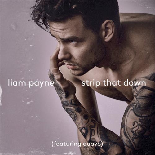 Liam Payne Strip That Down (feat. Quavo) cover art