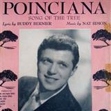 Nat Simon Poinciana cover kunst