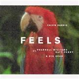 Calvin Harris Feels (featuring Pharrell Williams, Katy Perry and Big Sean) cover art