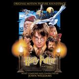 John Williams - Hedwig's Theme and Mr Longbottom Flies (from Harry Potter and the Philosopher's Stone)