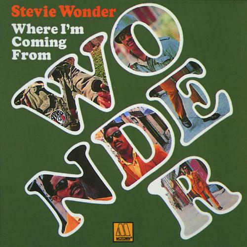 Stevie Wonder Never Dreamed You'd Leave In Summer cover art
