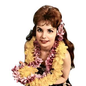 Traditional Hawaiian Folk Song Maori Farewell Song cover art