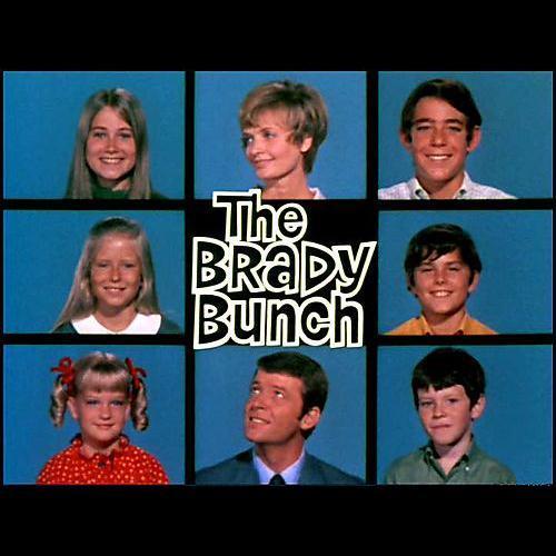 Sherwood Schwartz The Brady Bunch cover art
