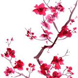 Audrey Snyder - Sakura (Cherry Blossoms)