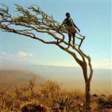 Zacchaeus-Traditional