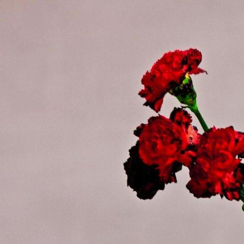 John Legend You And I (Nobody In The World) cover art