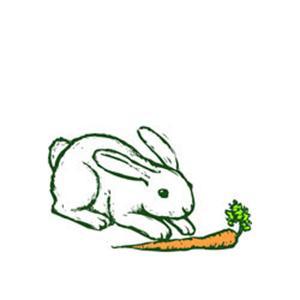 Traditional American Folksong Oh, John The Rabbit (arr. Robert I. Hugh) cover art