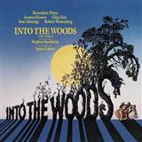 Mark Brymer Into The Woods (Choral Highlights) cover art