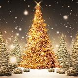Tablature guitare We Wish You A Merry Christmas de Traditional English Folksong - Ukulele