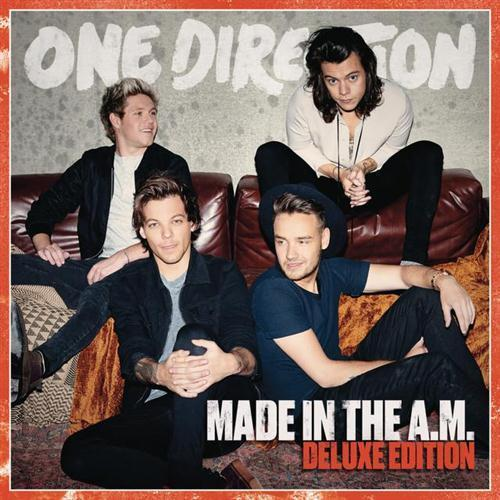 One Direction End Of The Day cover art
