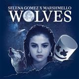 Selena Gomez & Marshmello - Wolves
