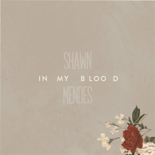 Shawn Mendes In My Blood cover art