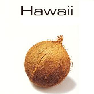 Bill Cogswell My Little Grass Shack In Kealakekua, Hawaii cover art