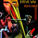 Steve Vai - Details At Ten