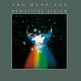 Van Morrison - Cleaning Windows